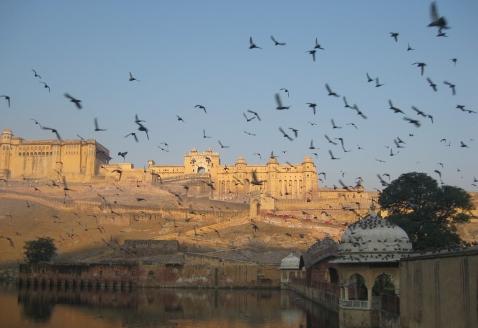 jaipur-1317152_1280